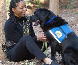 In Honor of Veterans Day – A Salute to Veterans and the Service Dogs Who Help Them