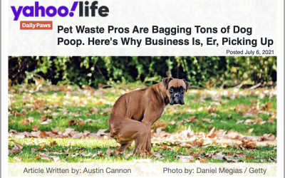 ScooperDude Pet Waste Removal — Interviewed for Yahoo News! Article